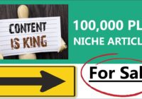 100,000 High Quality Niche PLR Articles For Sale